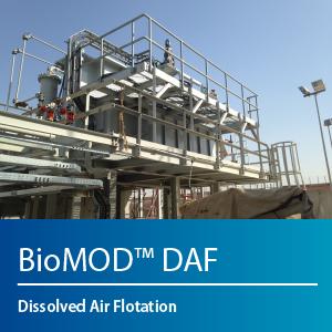 BioMOD DAF