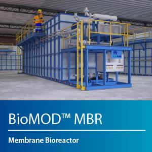BioMOD MBR